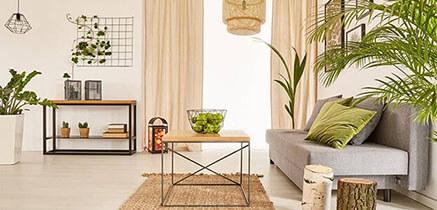 Schöne, grün eingerichtete Wohnung mit viel Platz