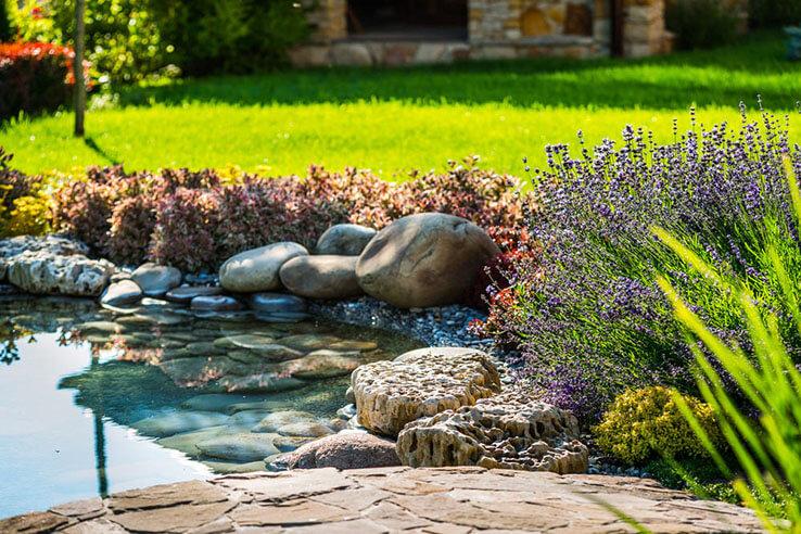 Pflanzen und kleiner Teich mit Steinen in Garten