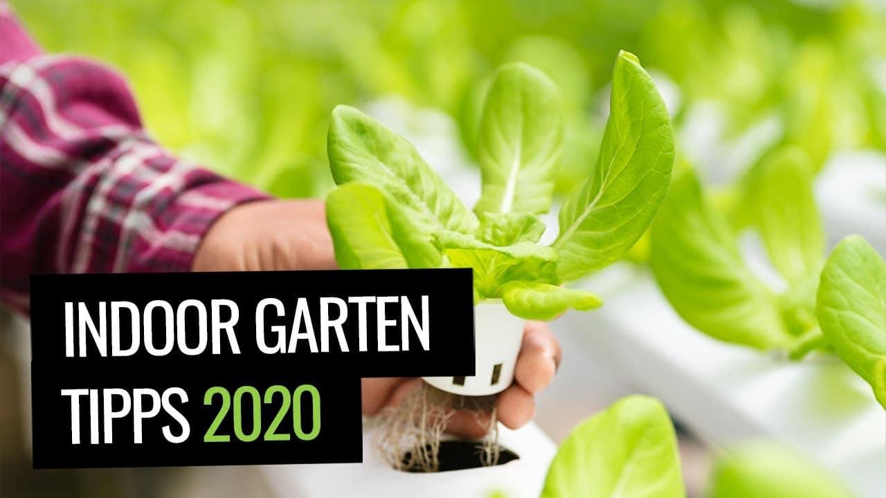 Indoor Garten mit Smart Gardening - Indoor Garten Tipps 2020