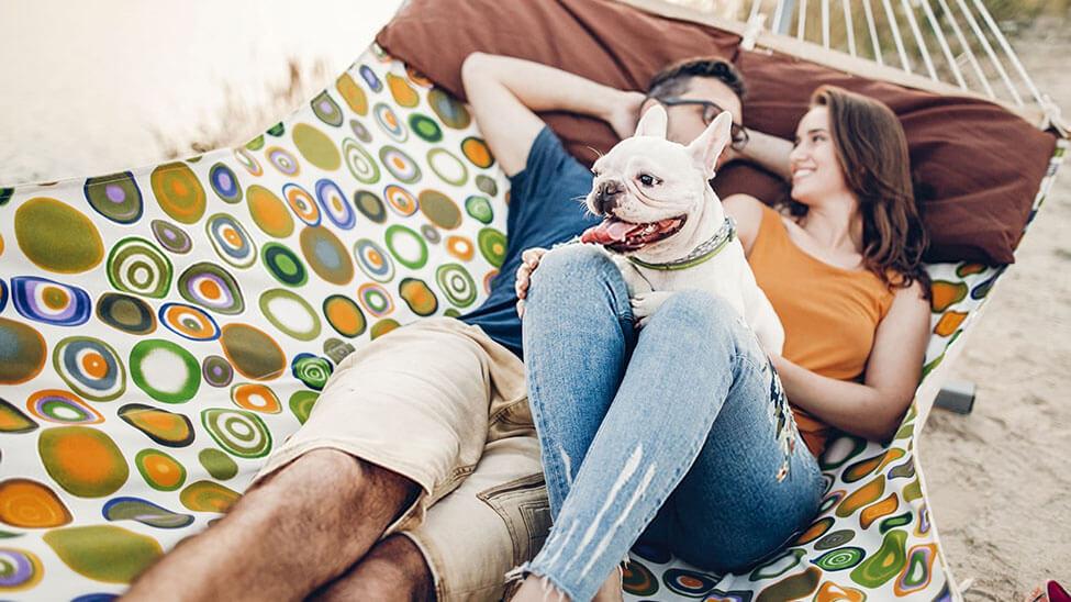 Paar mit Hund in Hängematte mit Metallgestell