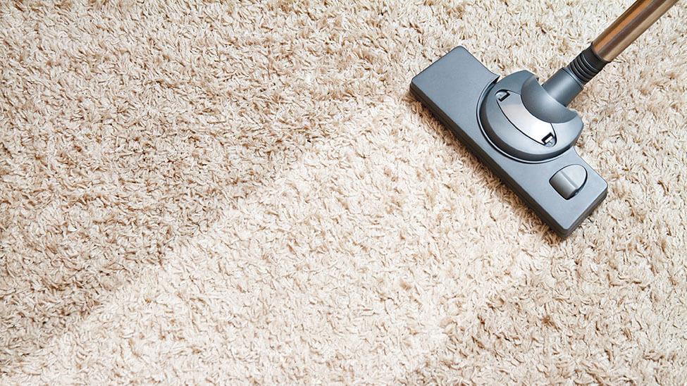 Teppichreiniger auf schmutzigem Teppich