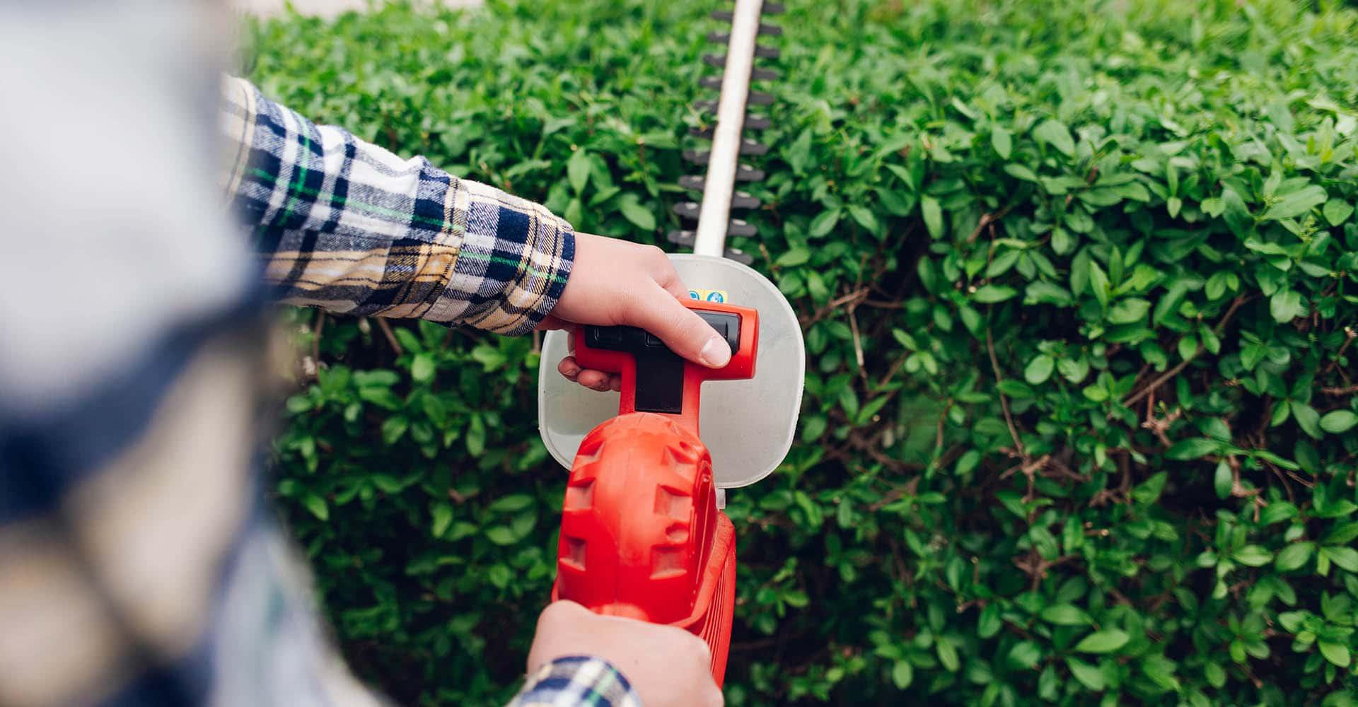 Mann schneidet Hecke mit Akku-Grasschere
