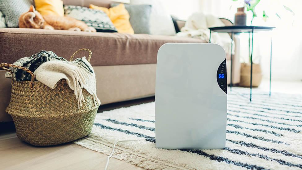Air Cooler auf Teppich im Wohnzimmer