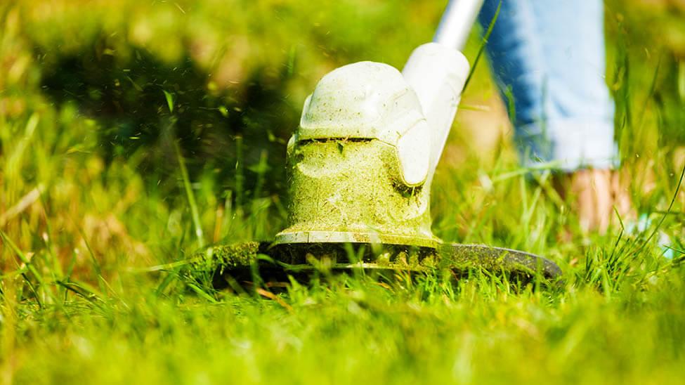 Rasenkantenschneider in Arbeit