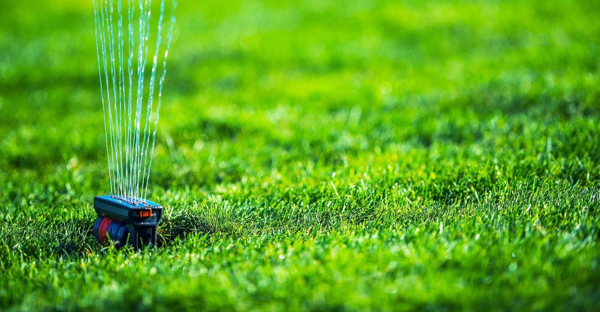 Rasensprenger auf Rasen