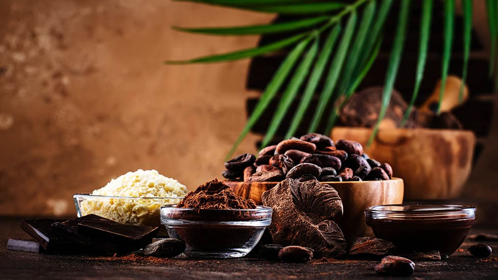 Verschiedene Kakaobutter-Produkte