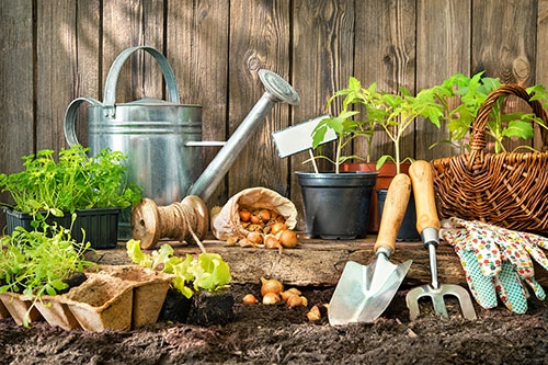 Gartengeräte und Pflanzen an Zaun